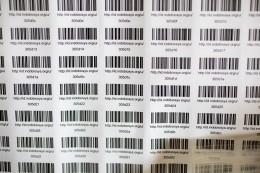 Databasing: QR-Code labels